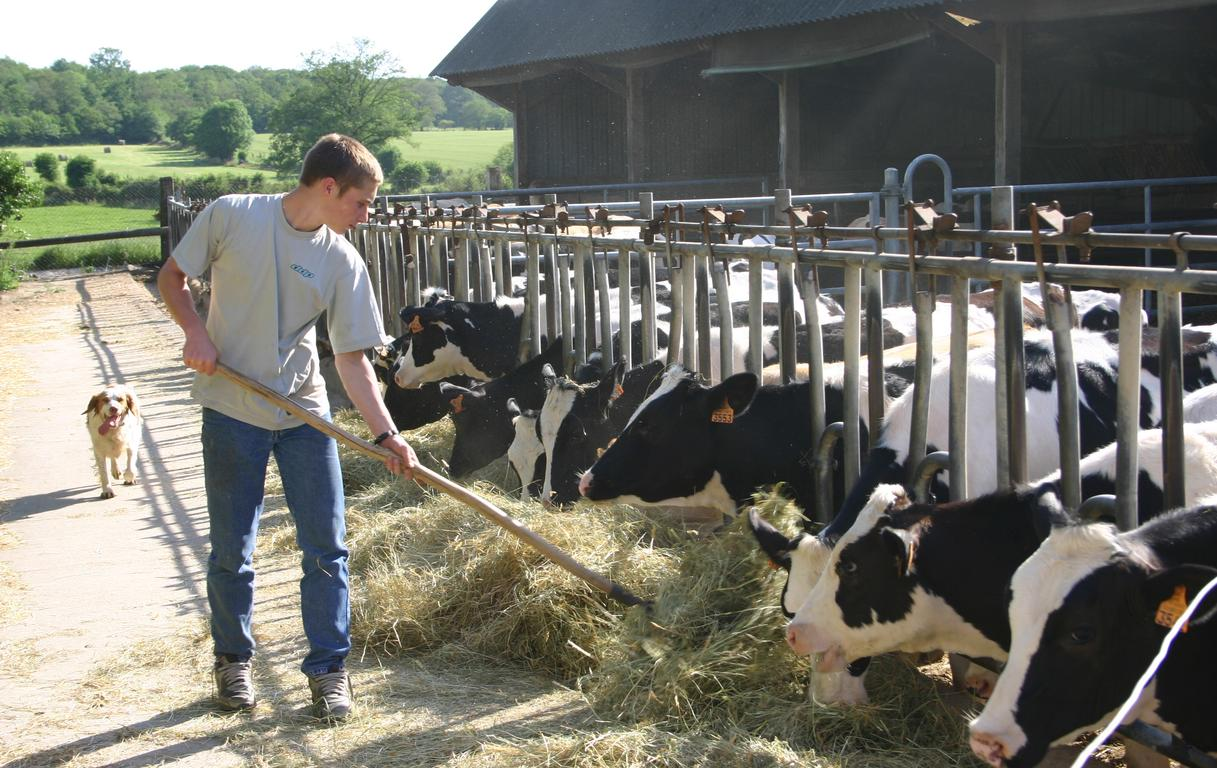 Installation en agriculture chambres d 39 agriculture pays - Chambre d agriculture de la mayenne ...