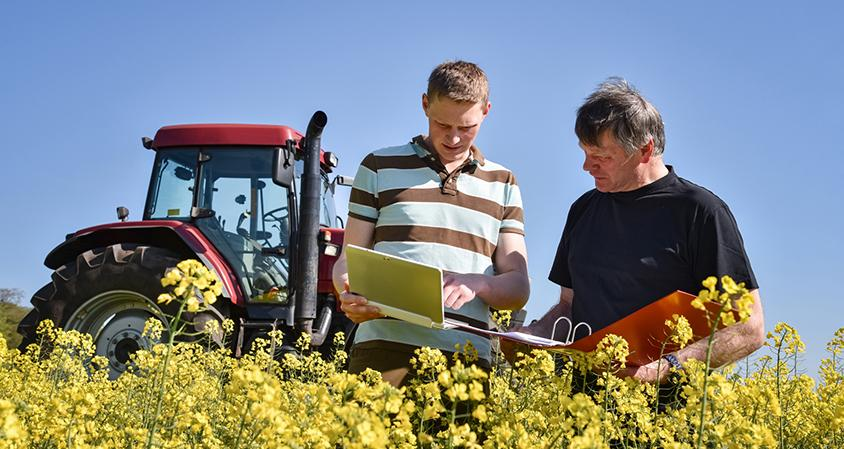 Apprentissage agriculture pays de la loire - Chambre regionale d agriculture pays de la loire ...
